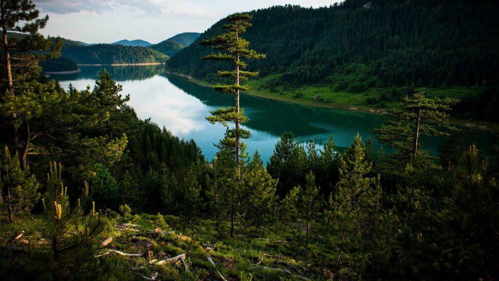 Zaovine Lake on Tara
